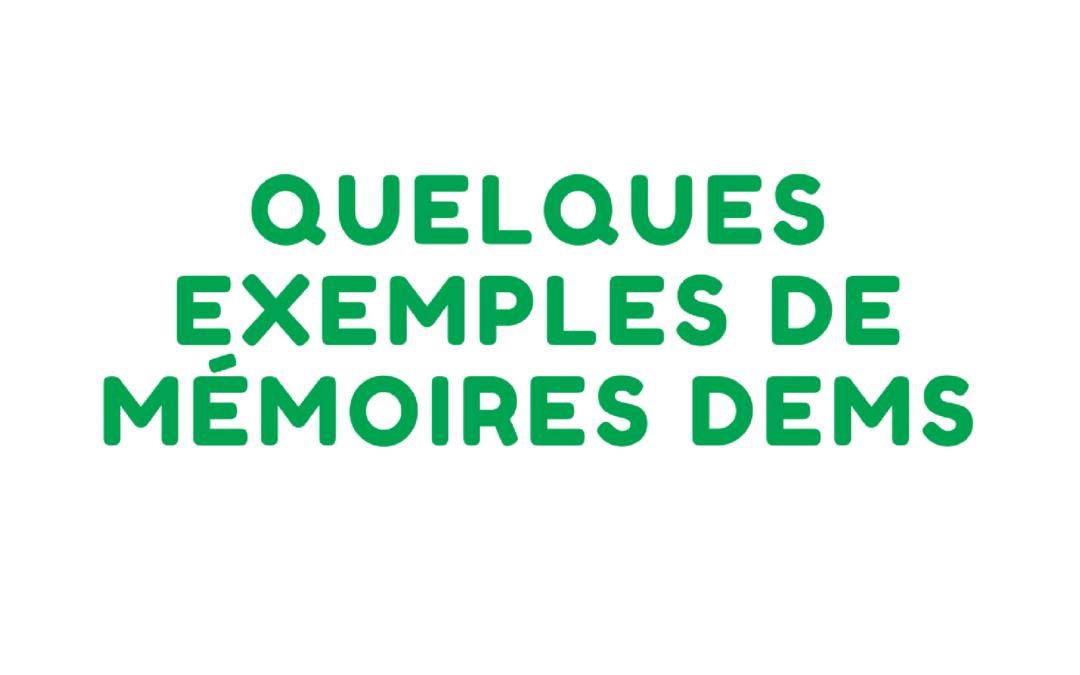 DEMS : quelques exemples de mémoires